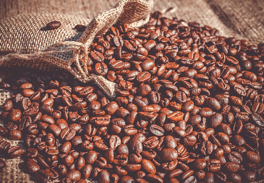 Producción de cafés especiales podría llegar a los 500 mil quintales en esta cosecha, confirman productores
