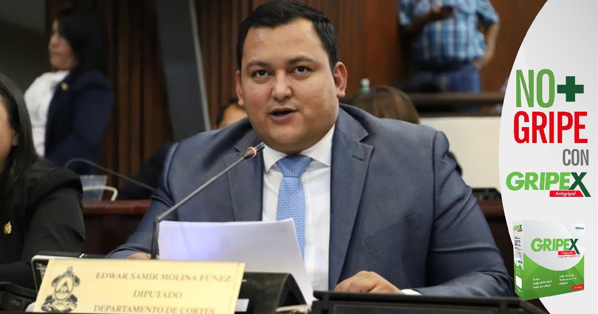 """Diputado Samir Molina: """"Hemos cumplido con la Constitución"""" al aprobarse el presupuesto para el proceso electoral"""