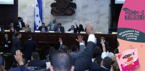 Congreso Nacional en sesión virtual, APRUEBA nueva Ley Electoral, de cara a las elecciones generales del 28 de noviembre