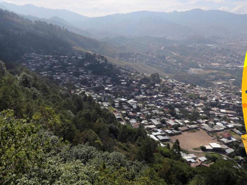 """Honduras conmemora """"Día del Árbol"""" con creciente destrucción de sus bosques"""