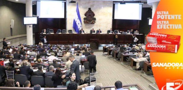 Sinager dice que no es seguro sostener sesiones presenciales en el Congreso Nacional