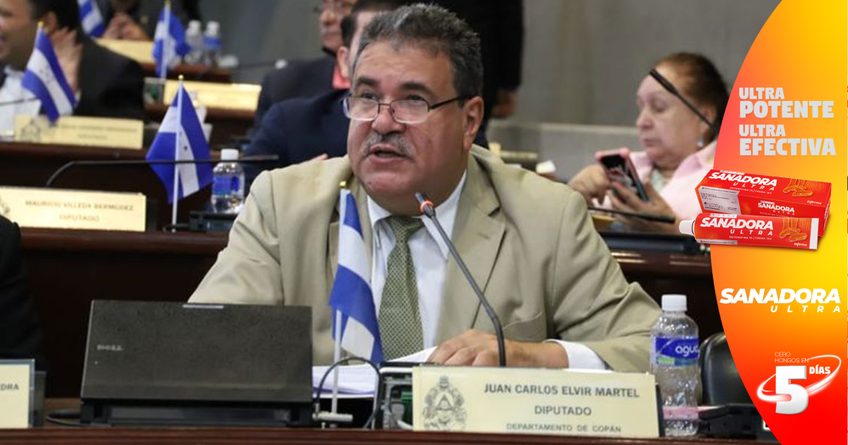 """Diputado Elvir dice que apoyarán iniciativa de las consejeras para reformar artículo que """"lacera"""" independencia del CNE"""
