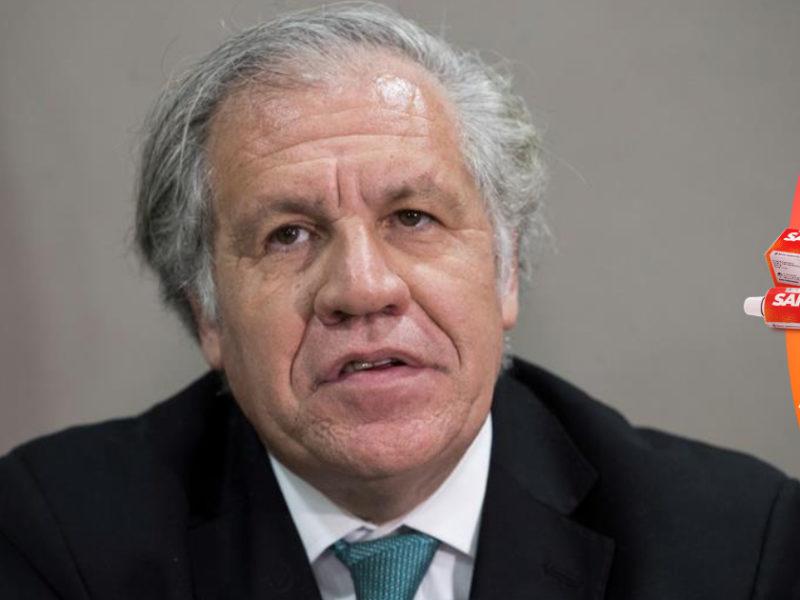 Carlos Reina: Una misión de observación electoral de la OEA enviada por Almagro, es una amenaza para la democracia de Honduras